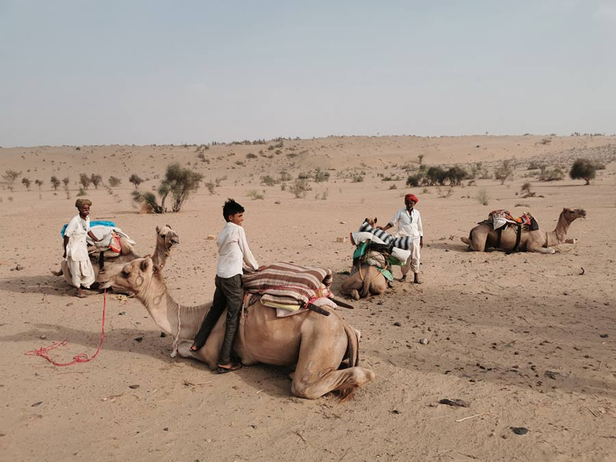un giro sul cammello nel deserto adiacente la città